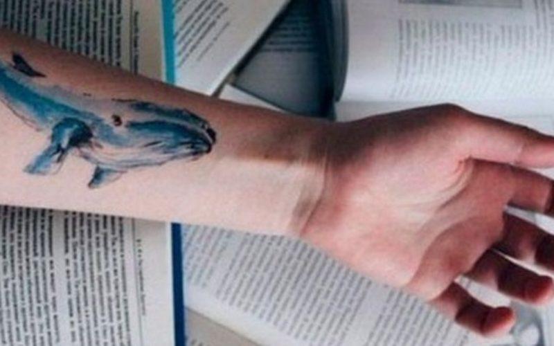"""De ce a apărut jocul """" balena albastră"""""""